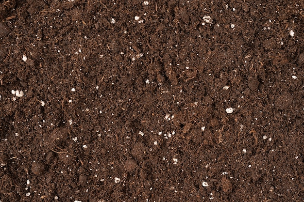 Close up brown color soil texture for backdrop or design use textured ground surface as background