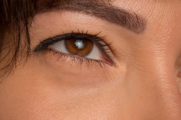 젊은 아름 다운 백인 여자의 얼굴에 갈색 눈을 닫습니다