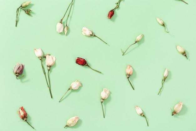 Бутон крупным планом сухого цветка, листьев и лепестков на зеленом.