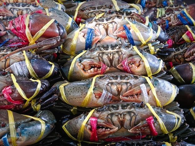 시장 매점에서 판매를위한 다채로운 밧줄으로 묶인 신선한 바다 게의 근접 무리