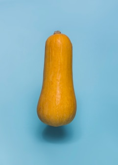 Close-up of a butternaut squash on blue backdrop