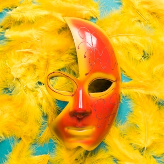 Close-up of carnival mask on feathers