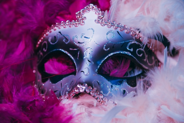 Close-up of carnival venetian mask on soft feathers