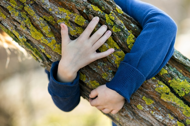 Close up of child hands embracing a tree trunk.