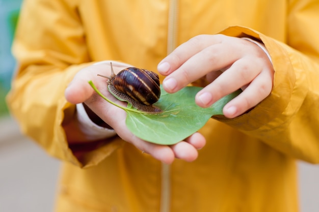 Close up of child in a yellow jacket holds a snail in his hands