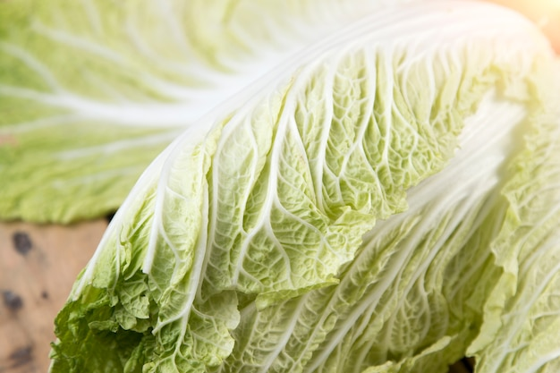 Close up chinese cabbage on wooden table.