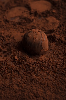 Close-up of chocolate candy over chocolate powder