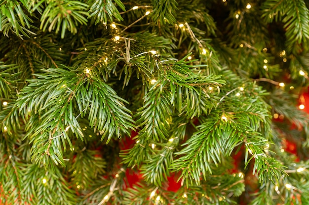 Close up of christmas tree wit sparkling garland in golden colors new year decoration