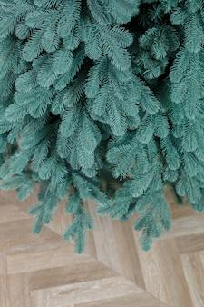장난감 없이 근접 크리스마스 트리입니다. 좋은 새해 정신. 녹색 크리스마스 트리의 가지를 닫습니다.