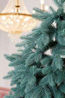 장난감 없이 근접 크리스마스 트리입니다. 좋은 새해 정신. 크리스마스 트리의 녹색 가지