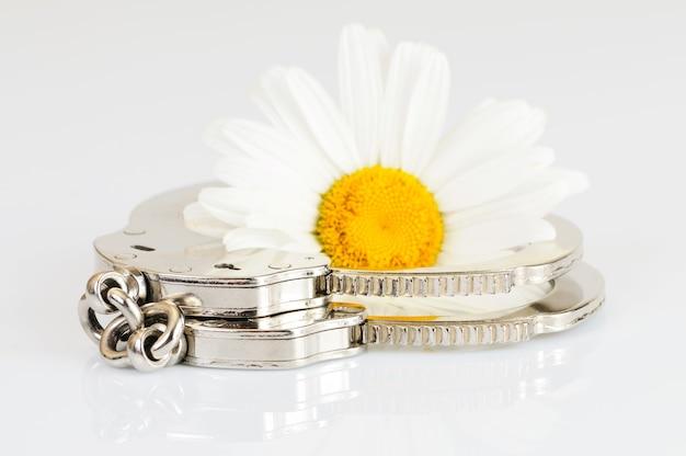 Крупный план выключенных хромированных металлических наручников лежит на белом столе рядом с ромашкой. понятие приятного рабства и заключения. идея концепции. место для рекламы