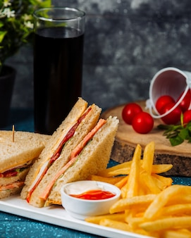 Close up of club sandwich with salami served with fries and sauces