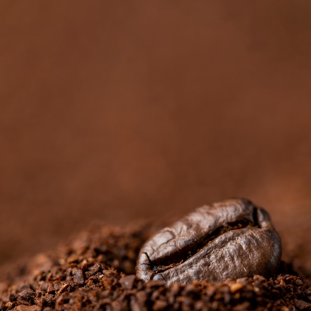 Close-up coffee bean in soluble coffee