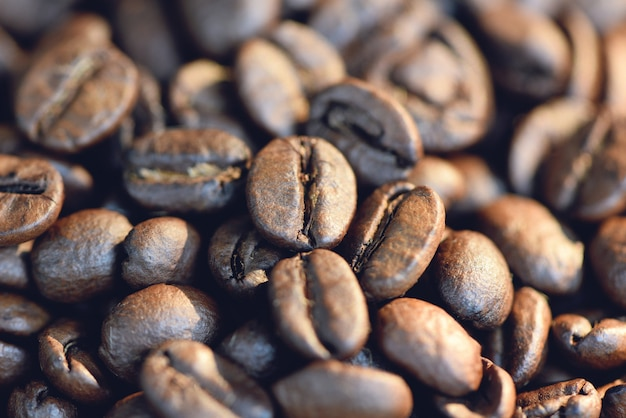 Close up of a coffee bean
