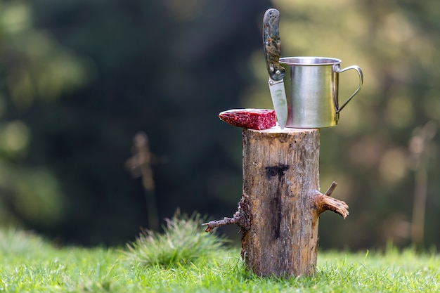 Close-up composition of folding pocket knife stuck vertically in tree stump, sausage and tin mug outdoors on dark green forest.