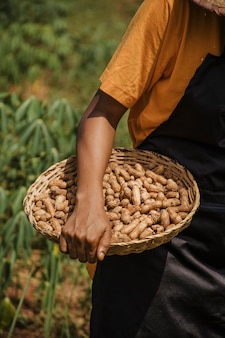 Close up of countryside worker holding peanuts
