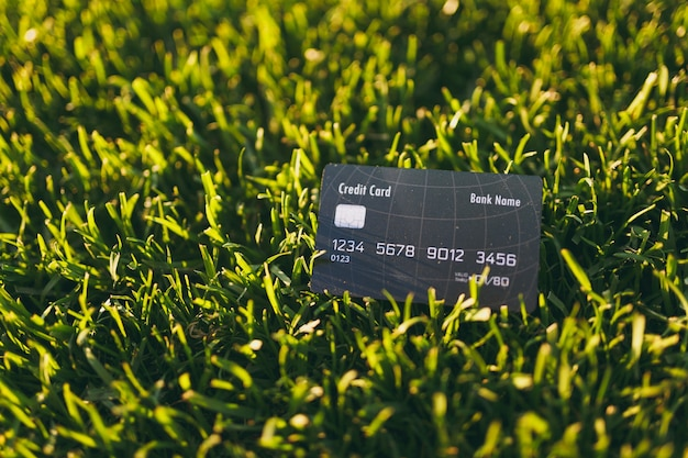 Close up credit bank black card on vibrant spring green fresh golf grass, sunshine lawn. nature texture, green background for wallpaper. soft focus. field or finance concept design. copy space.