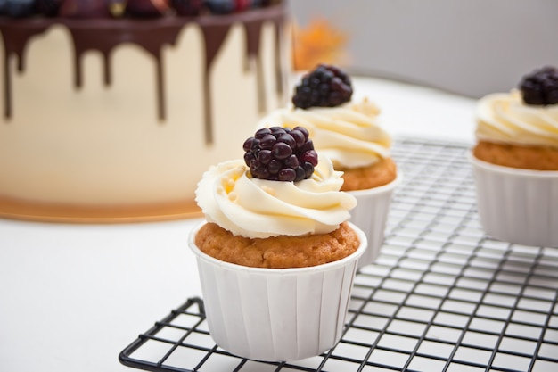 Close up cupcakes with white icing and blackberry on a metal baking rack and cake