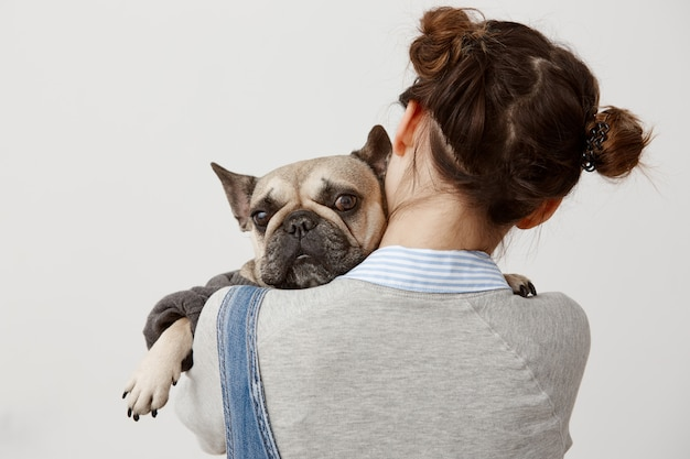 Close up cute french bulldog lying on shoulder of her female owner. picture from back of female veterinarian pressing sad puppy to her while doing tests. relation, responsibility
