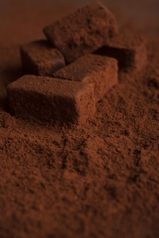Close-up of dark tasty chocolate candies covered in chocolate powder