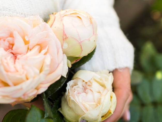 Close up of delicate rose bouquet