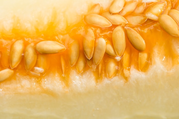 Close-up of delicious honeydew melon