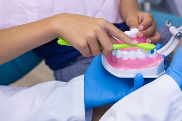 Close-up of dentist and boy brushing dentures
