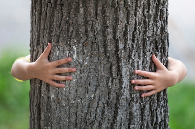 Close-up detail isolated growing big strong tree trunk embraced from behind by small child hands.