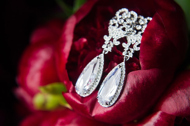 Close up of diamond earrings. close up,  space for your text