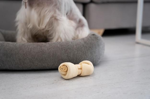 ベッドに座っている犬をクローズアップ