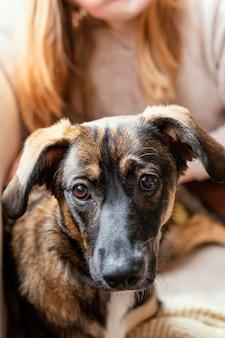 Крупным планом собака сидит на хозяине