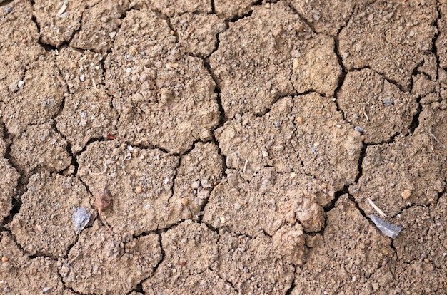 Close up dry soil