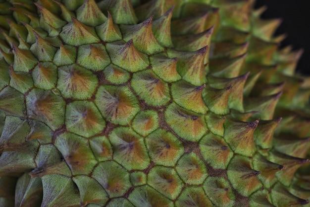 Close- up , durain mon thong , king of fruits .