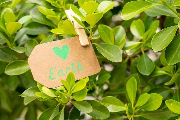 Close-up earth sign in leaves