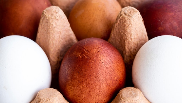 Uova del primo piano in cassaforma
