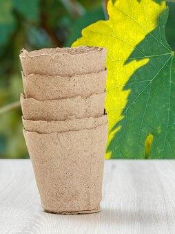 녹색 자연 표면으로 야채 모종에 대한 근접 빈 골판지 캔