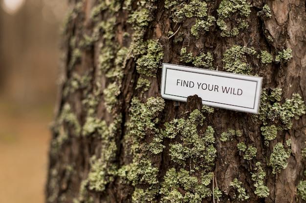 Крупный план, поощряющий писать на стволе дерева