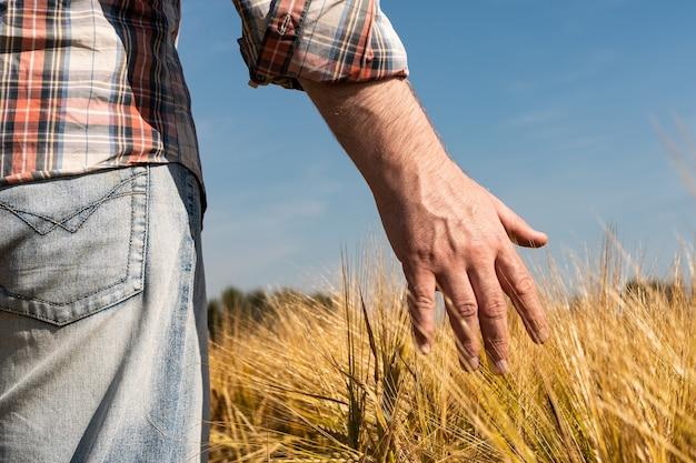 麦畑の農家を閉じる