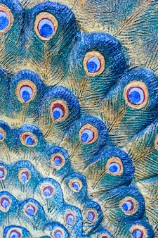 Close up feather peacock statue background