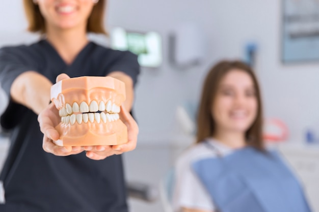 Close-up of female dentist showing teeth model in front of camera