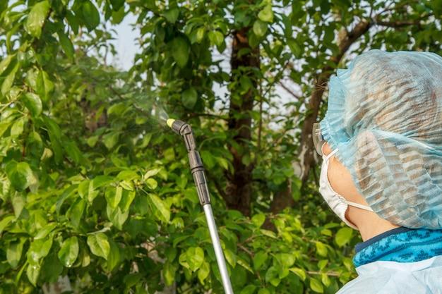 보호복을 입은 클로즈업 여성 농부가 과수원에서 압력 분무기와 화학 물질을 사용하여 곰팡이 질병이나 해충의 사과 나무를 뿌리고 있습니다.
