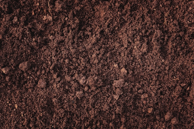 Close-up of fertile loam for the background