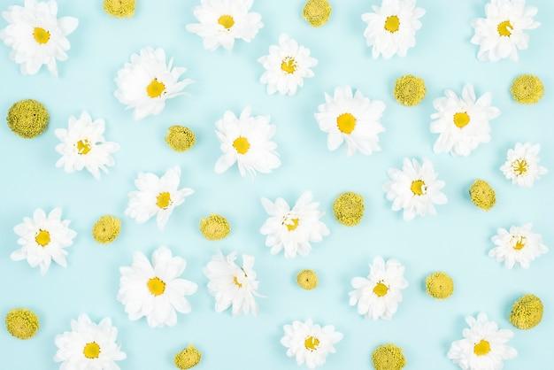 Close-up of flower pattern on blue backdrop