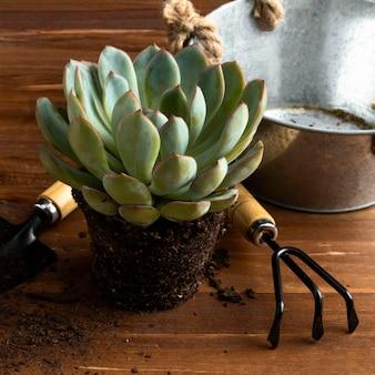 クローズアップの植木鉢とツール