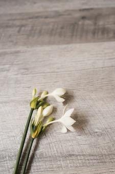Primo piano dei fiori su fondo strutturato di legno