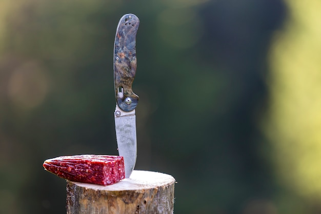 Close-up of folding pocket knife stuck vertically in tree stump and piece of sausage outdoors on dark green forest.