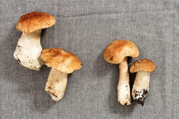 Close-up forest fresh mushrooms, boletus edulis on cloth textured surface.