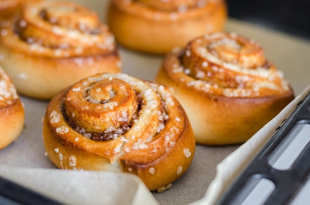 Close up of fresh baked cinnamon rolls on steel baking tray. homemade cinnamon buns for breakfast. swedish sweet pastry background.