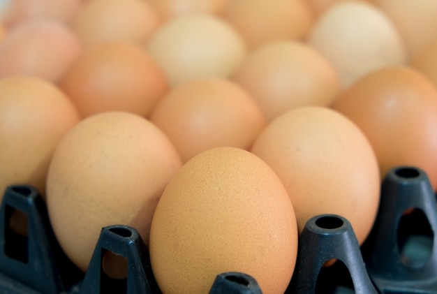Close up fresh chicken eggs in the package