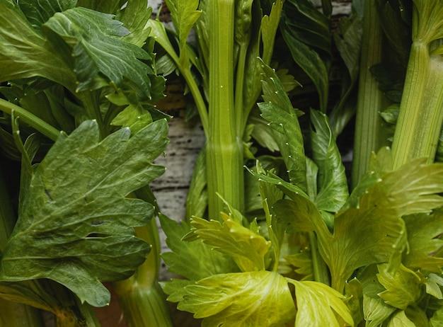 Крупным планом свежие зеленые переговоры овощи